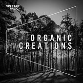Play & Download Organic Creations (Issue 1) by Various Artists | Napster