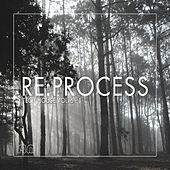 Play & Download Re:Process (Tech House, Vol. 6) by Various Artists   Napster