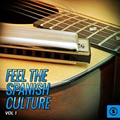 Play & Download Feel The Spanish Culture, Vol. 1 by Various Artists | Napster