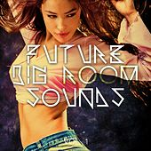 Future Big Room Sounds, Vol. 1 by Various Artists