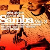 Pra Quem Gosta de Samba, Vol. 3 by Various Artists