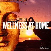 Play & Download Wellness At Home, Vol. 1 (Home Relaxing Feel Good Music) by Various Artists | Napster