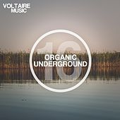 Play & Download Organic Underground Issue 16 by Various Artists | Napster