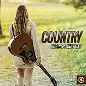 Country During Sunny Day, Vol. 2 by Various Artists