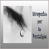 Play & Download Atrapados por la Nostalgia by Various Artists | Napster