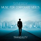 Play & Download Synergy: Music for Corporate Videos - Tranquility by Various Artists | Napster
