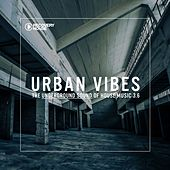 Play & Download Urban Vibes - The Underground Sound Of House Music 3.7 by Various Artists | Napster