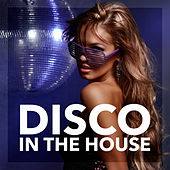 Play & Download Disco in the House by Various Artists | Napster