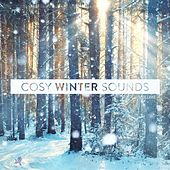 Cosy Winter Sounds, Vol. 4 by Various Artists