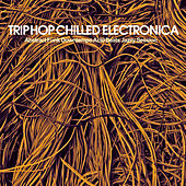 Trip Hop Chilled Electronica (Abstract Funk Downtempo Acid Beats Jazzy Session) by Various Artists