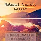Play & Download Natural Anxiety Relief - Instrumentale Chakra Meditatie Spirituele Genezing Muziek voor Slaap Yoga Mindfulness Oefeningen en Massage Therapie by Bedtime Songs Collective | Napster