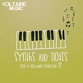 Play & Download Synths and Notes 17 by Various Artists | Napster