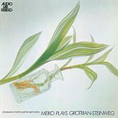 Meiko Plays Grotrian-steinweg Schumann by Meiko Miyazawa