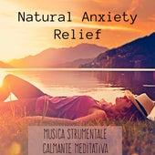 Natural Anxiety Relief - Musica Strumentale Calmante Meditativa per un Sonno Profondo Equilibrio Fisico Terapia Chakra e Massaggi Benessere by Bedtime Songs Collective