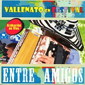 Play & Download Vallenato en Festival: Entre Amigos (En Vivo) by Various Artists | Napster