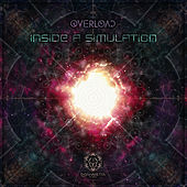 Inside a Simulation by Various Artists