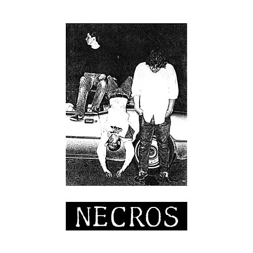 Ambionic Sound (1979) by The Necros