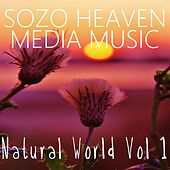 Play & Download Natural World, Vol. 1 by Sozo Heaven | Napster