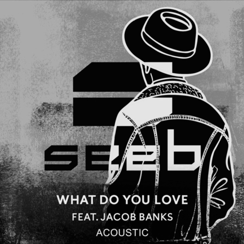 What Do You Love (Acoustic) von seeb