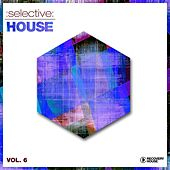 Selective: House, Vol. 6 by Various Artists