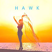 Play & Download Dimentions by H.A.W.K. | Napster