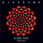 Play & Download Blown Rose by Blossoms | Napster