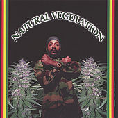 Play & Download Natural Vegetation by Various Artists | Napster