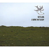 I Shine Not Burn by Skylark (70's)