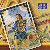Play & Download The Fool And The Hummingbird by Peter Kater | Napster