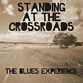 Play & Download Standing At The Crossroads: The Blues Experience by Various Artists | Napster