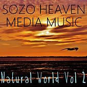 Play & Download Natural World, Vol. 2 by Sozo Heaven | Napster