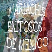 Play & Download Mariachis Exitosos de Mexico by Various Artists | Napster