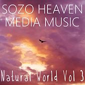 Play & Download Natural World, Vol. 3 by Sozo Heaven | Napster
