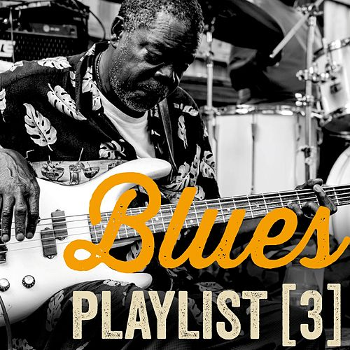 Blues Playlist, Vol. 3 by Various Artists