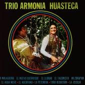 Play & Download 20 Exitos by Trio Armonia Huasteca | Napster