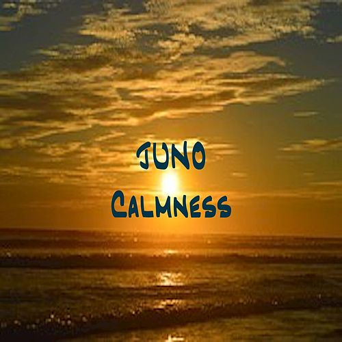 Play & Download Calmness by Juno | Napster