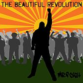 The Beautiful Revolution by Mr. P Chill