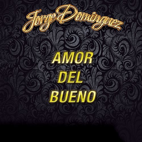 Amor del Bueno by Jorge Dominguez y su Grupo Super Class