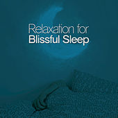 Play & Download Relaxation for Blissful Sleep by Various Artists | Napster