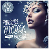 Play & Download Winter House Beats by Various Artists | Napster