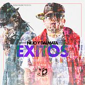 Play & Download Exitos by Ñejo & Dalmata | Napster