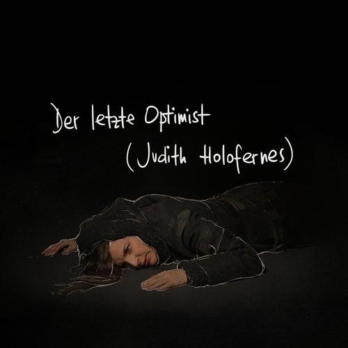 Der letzte Optimist von Judith Holofernes
