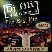 The Ray Mix de Various Artists