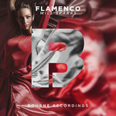 Flamenco by Will Sparks