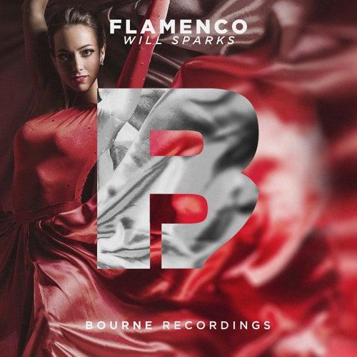 Flamenco de Will Sparks