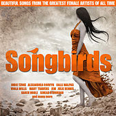 Play & Download Songbirds by Various Artists | Napster