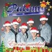 En Esta Navidad by Palomo