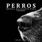Play & Download Perros: Musica Relajante para Perros (Sonidos de la Naturaleza) by Various Artists | Napster