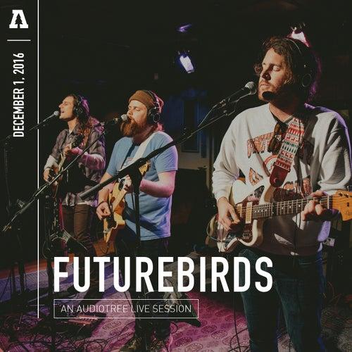 Futurebirds on Audiotree Live by Futurebirds