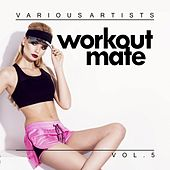 Workout Mate, Vol. 5 by Various Artists